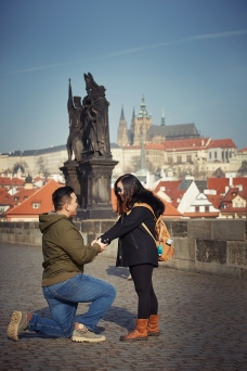 Charles Bridge proposal